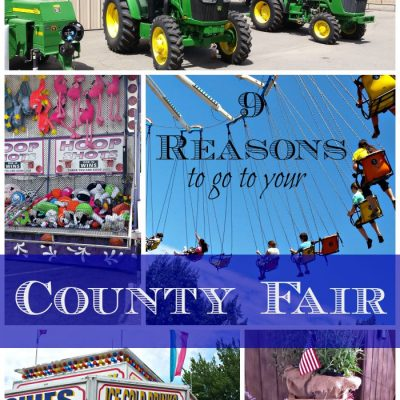 9 Resons Why You Should Go to Your County Fair