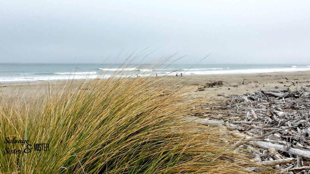 The beautiful Oregon Coast was our day trip without the kids.  Are you building your marriage up for the time the kids have left?  Empty nest happens before you know it.