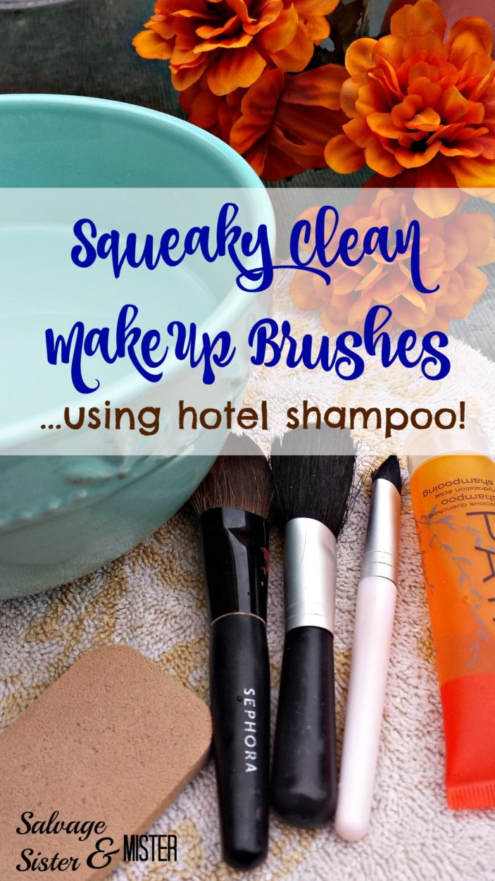 squeaky clean make up brushes pin