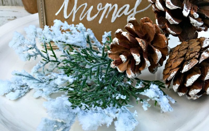 Picture Frame Place Cards