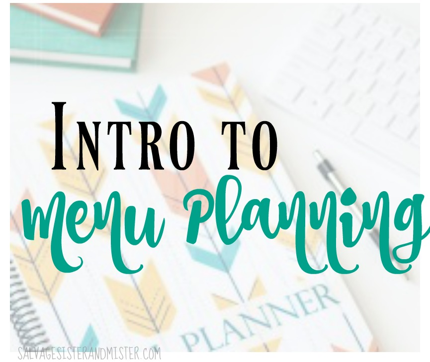 A free mini-course for our newsletter subscribers -Intro to Menu planning. This is not only a great way to save money but also avoid food waste. The average household wastes one third of their food budget on waste.