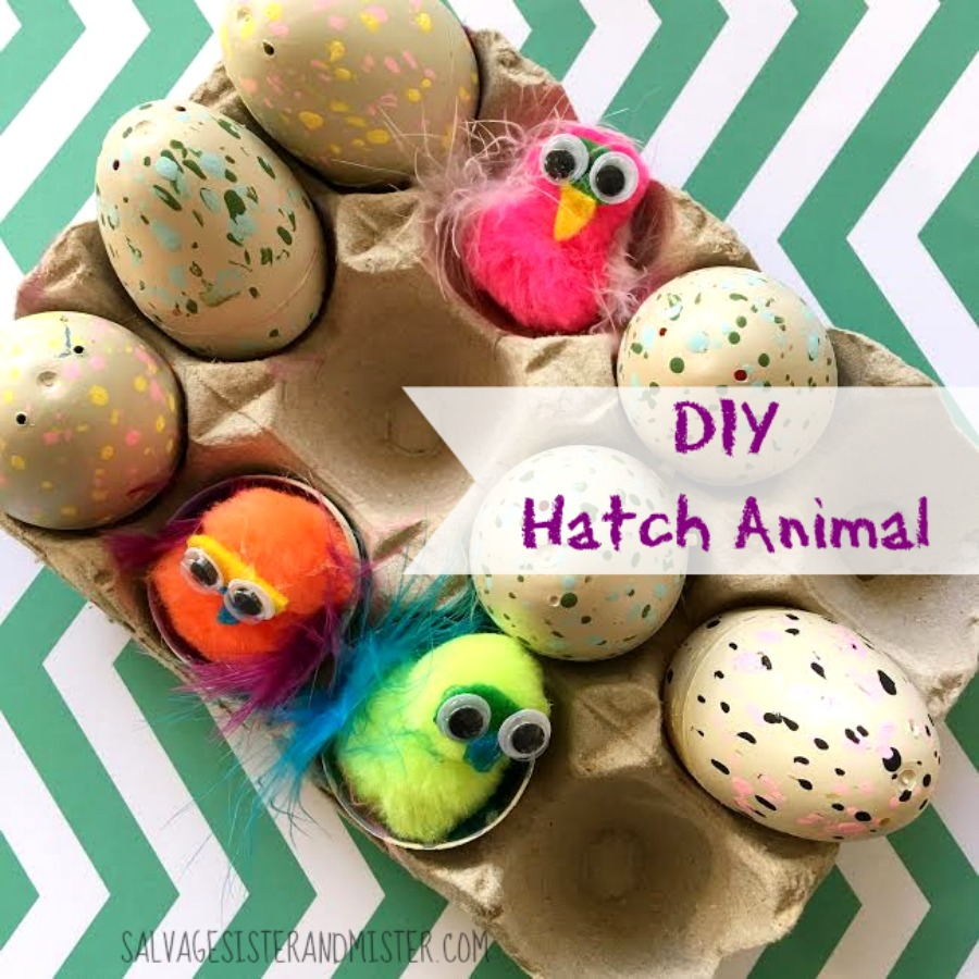 "DIY your own ""hatch Animals"" The most popular gift can be made by reusing last years plastic Easter eggs. This quick craft is easy for kids to do wtih just a little parent help. Fun for a valentine or for a rainy day craft."