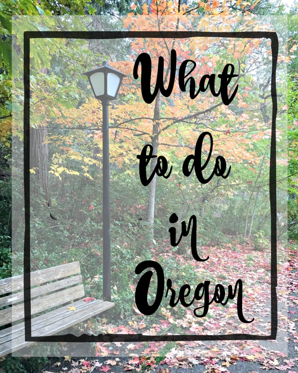 What To Do In Oregon Salvage Sister And Mister