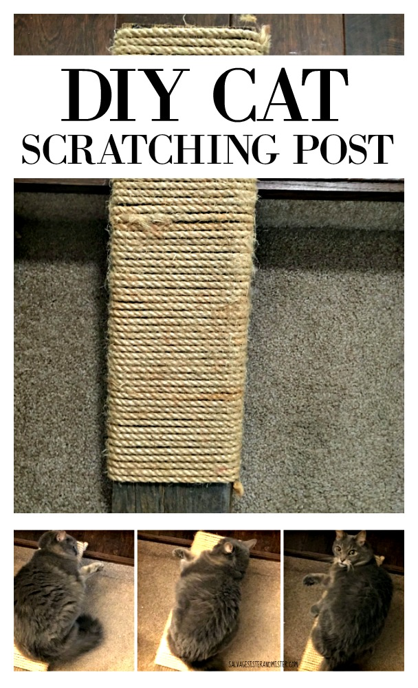 If you have kitties, you know they need a place to sharpen their nails without damaging your furniture. Instead of purchasing one, we made our own - DIY cat scratching post using scraps we had lying around. Budget-friendly way to keep your cats happy and your furniture even happier. Get the tutorial at salvagesisterandmister.com