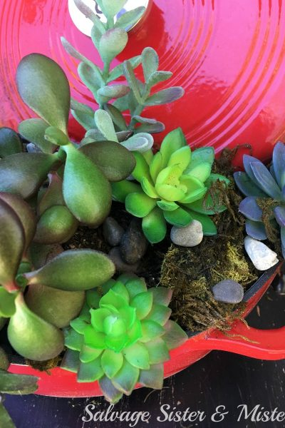 Plant Outside the Box – Repurposed Dutch Oven Planter
