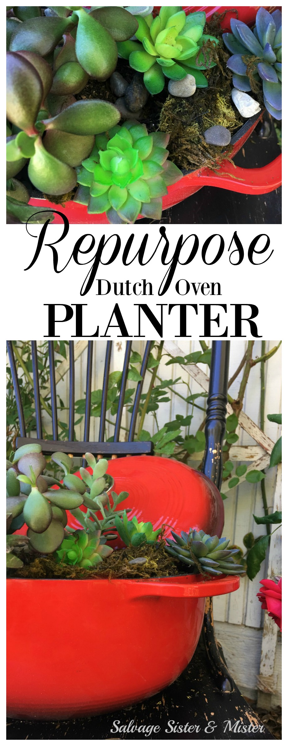 Terra-cotta and window boxes aren't the only thing that can hold your plants. What can you repurpose, upcycle, or reuse to display on your front porch, gardening bench, or back patio? A little DIY time and you can take something you may not use anymore into something new like this repurposed dutch oven planter. Planting outside the box with Wayfair. #sponsored