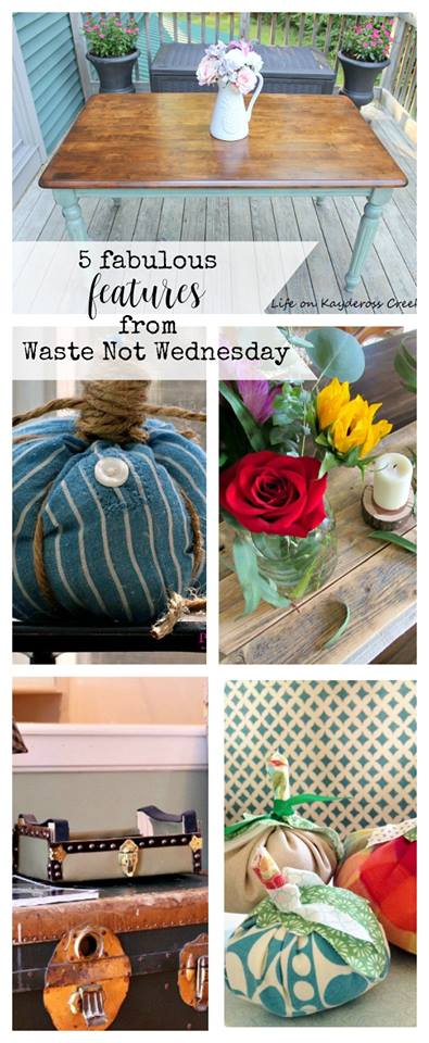 Looking for inexpensive or waste less projets for the fall?  Join our waste not Wendesday party to be inspired or share your projects.  BLoggers can add their links to the linky party.  All others can see the diy, crafts, and recipes making use with what people already have.