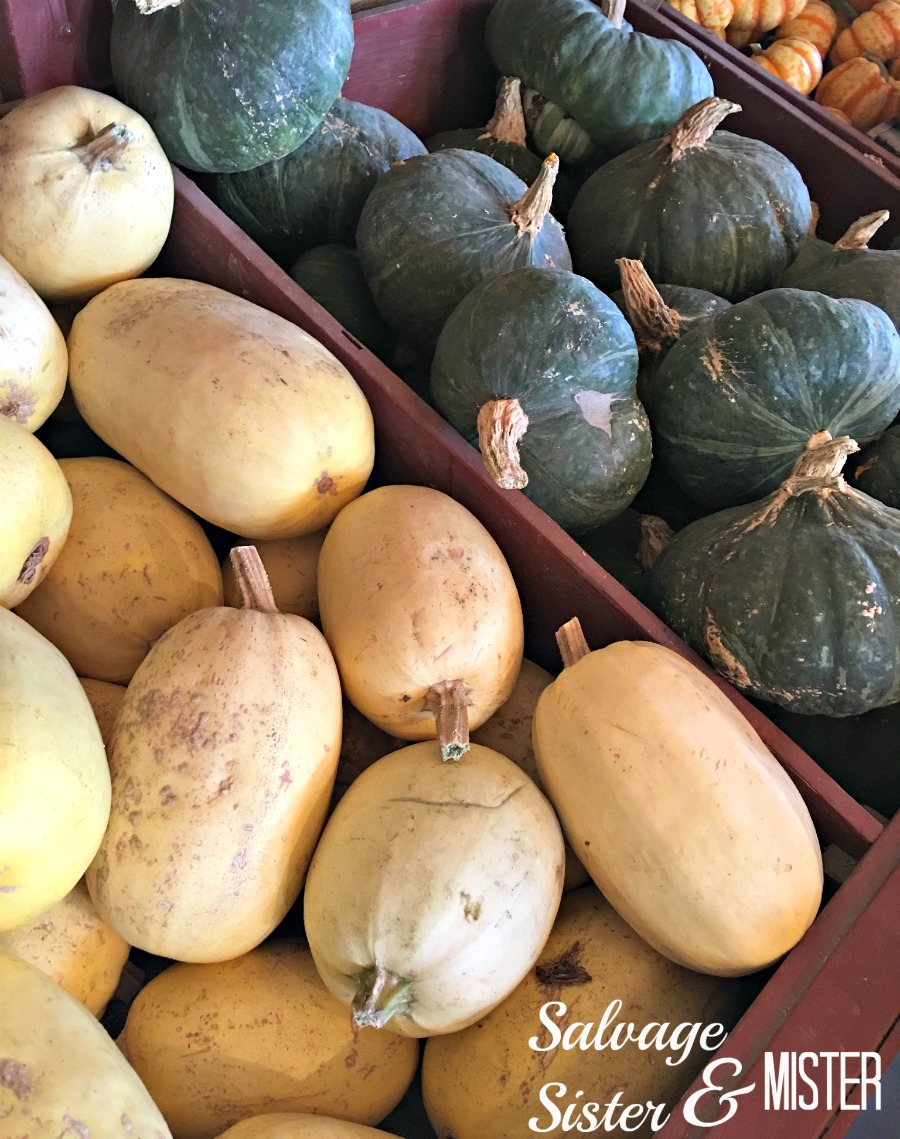 Choose edible squash for your fall decor so it doesn't go to waste.