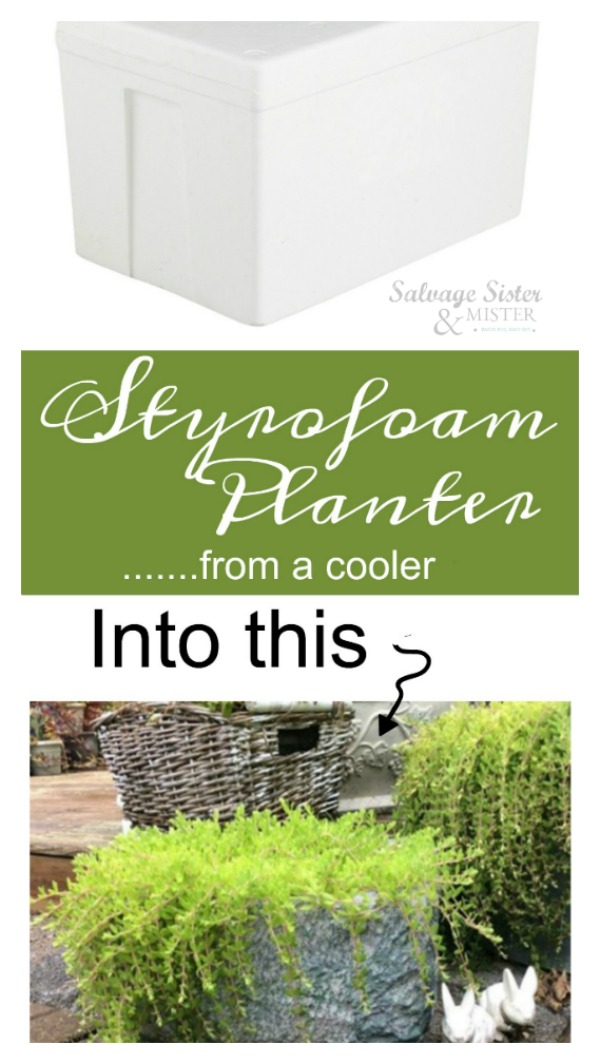 How to turn a cooler into a Styrofoam planter for the backyard.  This container is a great way to upcycle or repurpose a food package delivery cooler.  Use this for your backyard decor.  Get this diy reuse craft on salvagesisterandmister.com waste not, ant not