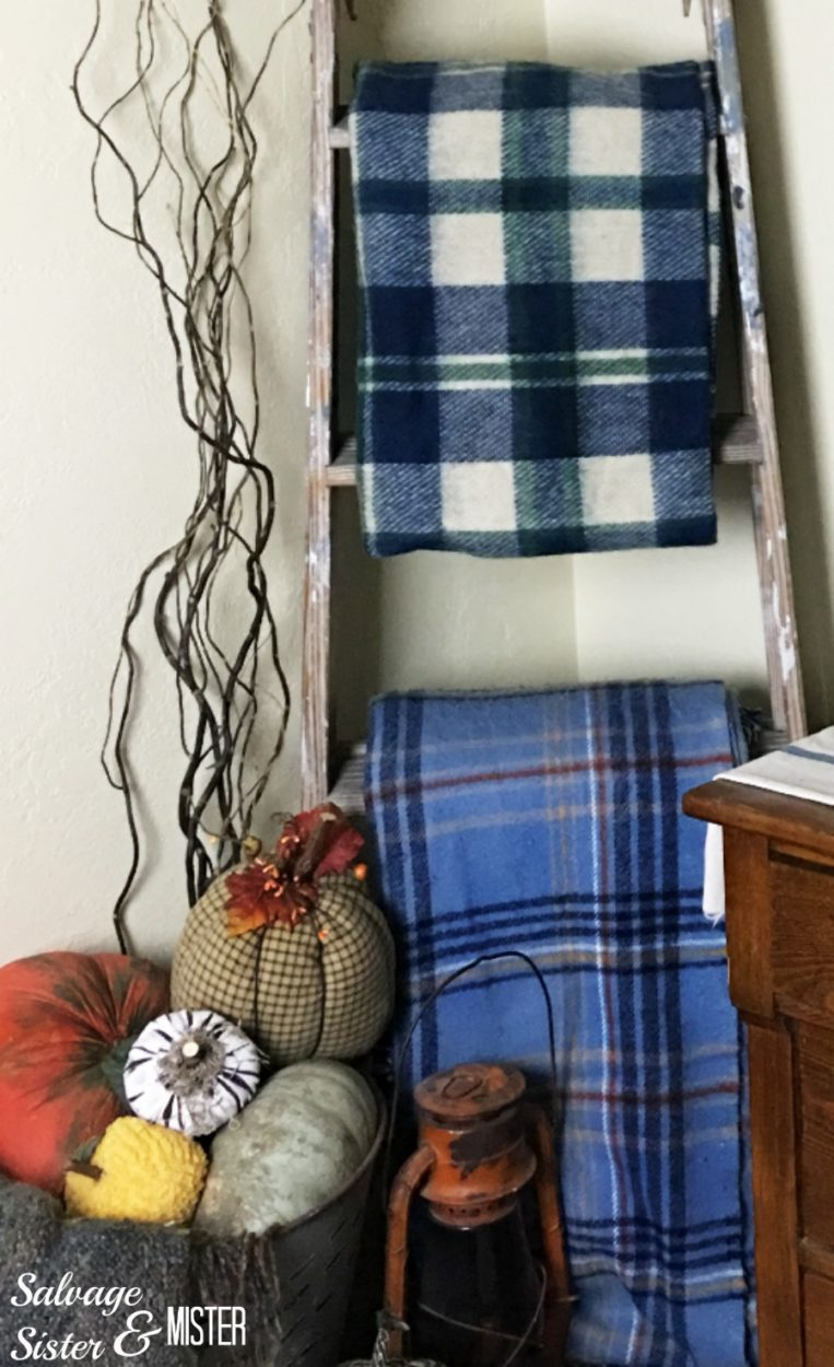 Thrifted blanket ladder with an old wooden ladder from the restore. Inexpensive item to use in home decor. Budget decorating.