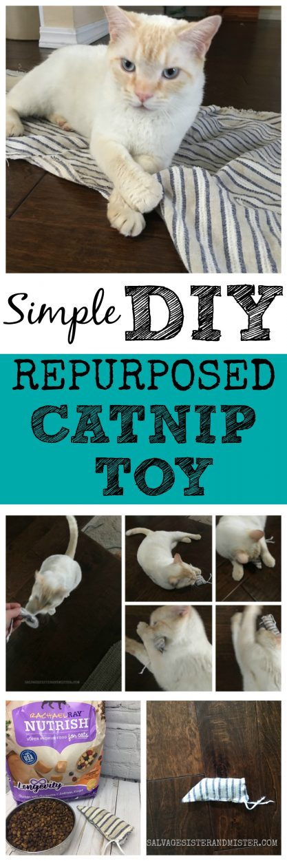 An easy DIY repurposed catnip toy that you can make for your kitty. #cats #repurposed #sponsored