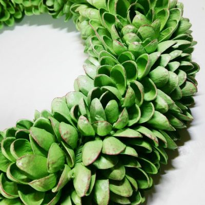 craft project using pistachio shells - Faux Succulent Pistachio Wreath #upcycle #reuse #repurpose