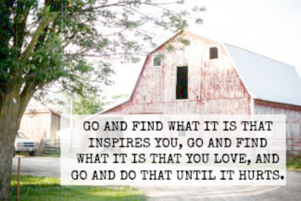 CHIP AND JOANNA GAINES QUOTE - GO AND FIND WHITE IT IS THAT INSPIRES YOU, GO AND FIND WHAT IT IS THAT YOU LOVE, AND GO AND DO THAT UNTIL IT HURTS.