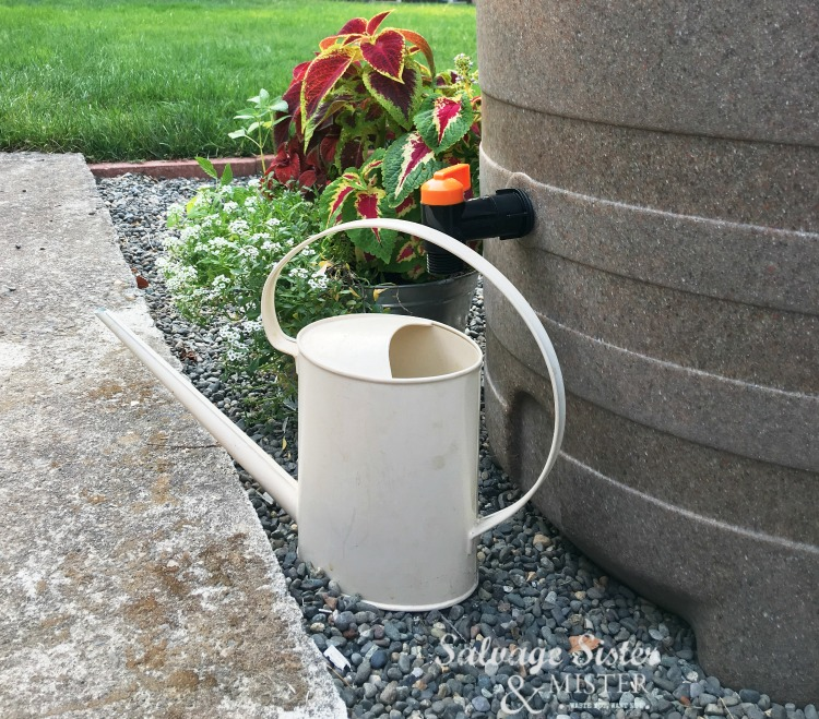 Backyard Rainwater Collection System - how to install and what system we choose #rainwater #rainbarrel #reuse #recycle