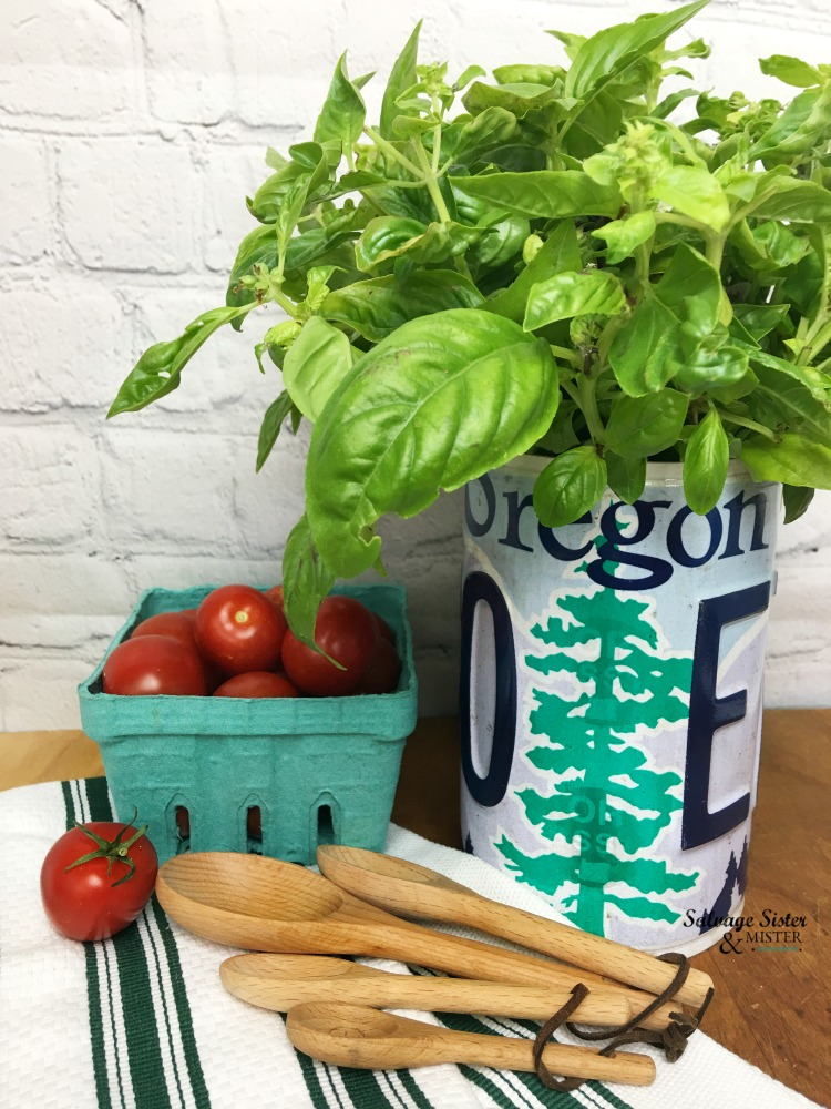 Repurpose project - DIY upcycled license plate planter. Find full instructions at https://www.salvagesisterandmsiter.com #upcycle #repurpose #reuse