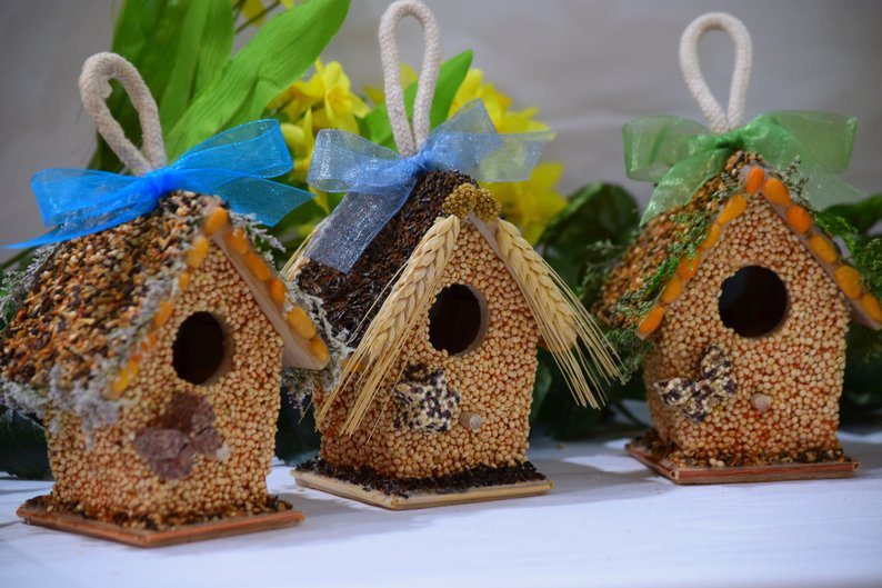 edible bird houses affiliate link