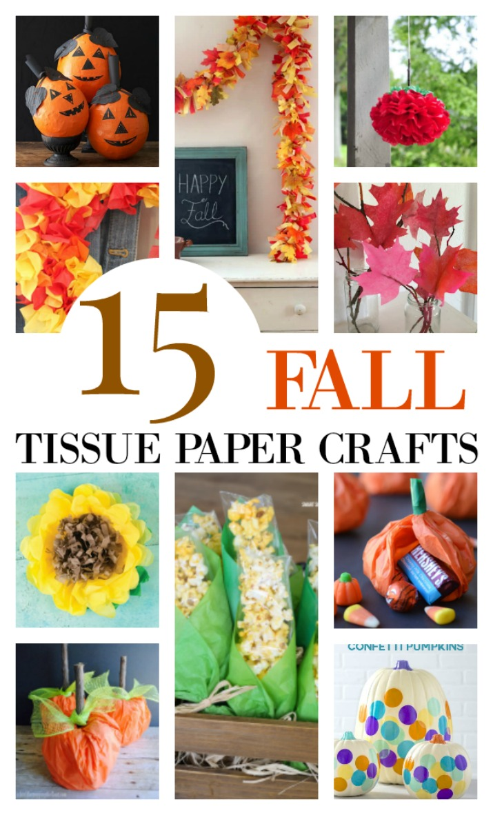 Have extra tissue paper lying around? Reuse - repurpose it in these 15 fall tissue paper crafts. Easy crafts for the home, Thanksgiving table, or for a party. Kids crafts too. Easy and simple projects you can do wtih most things you have on hand. Budget friendly crafts. Make some no carve pumpkins with tissue or tissue paper sunflowers. Get these 15 ideas on salvagesisterandmister.com (waste not, want not)