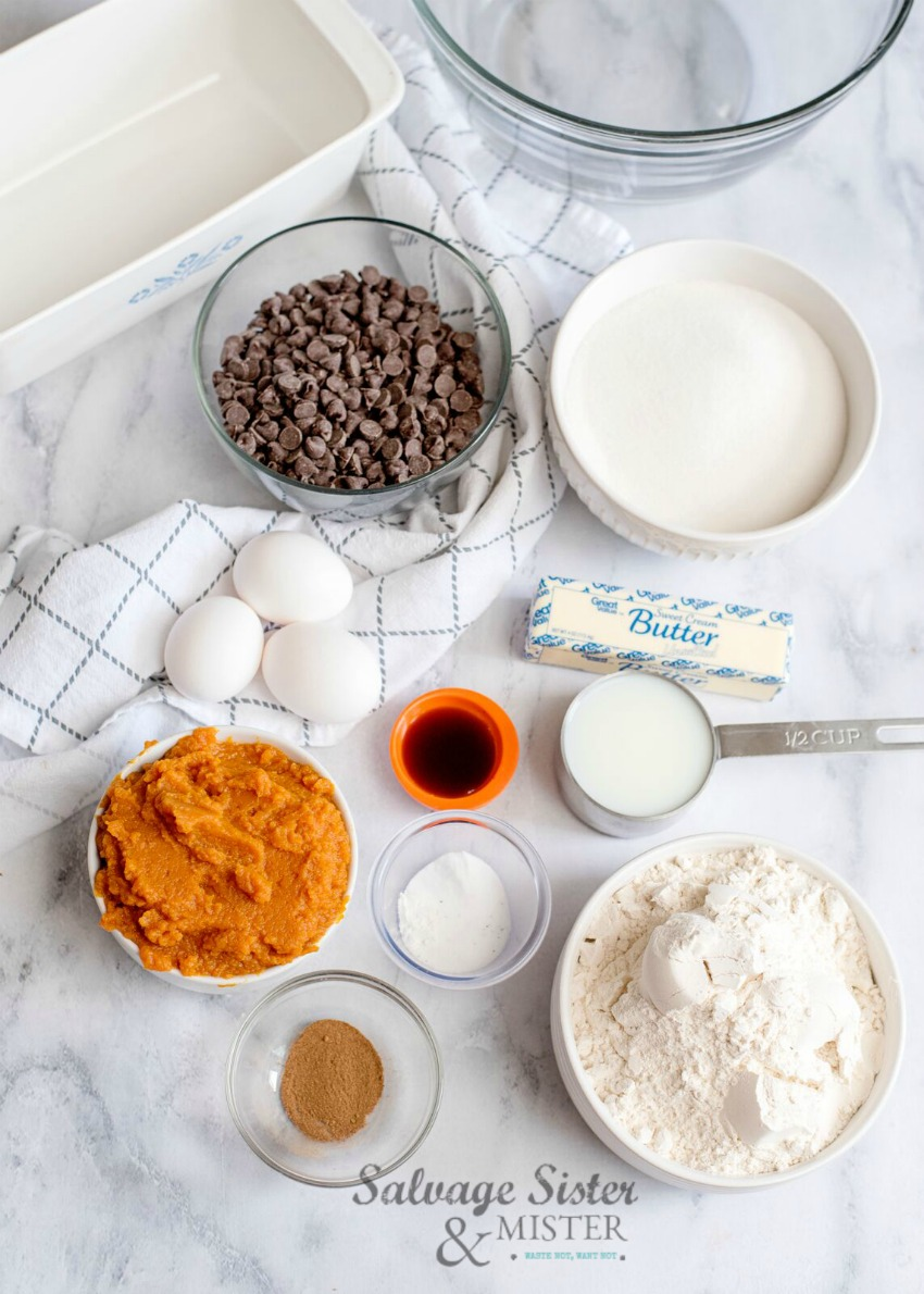 ingredients for pumpkin bread with chocolate chips on salvagesisterandmister.com