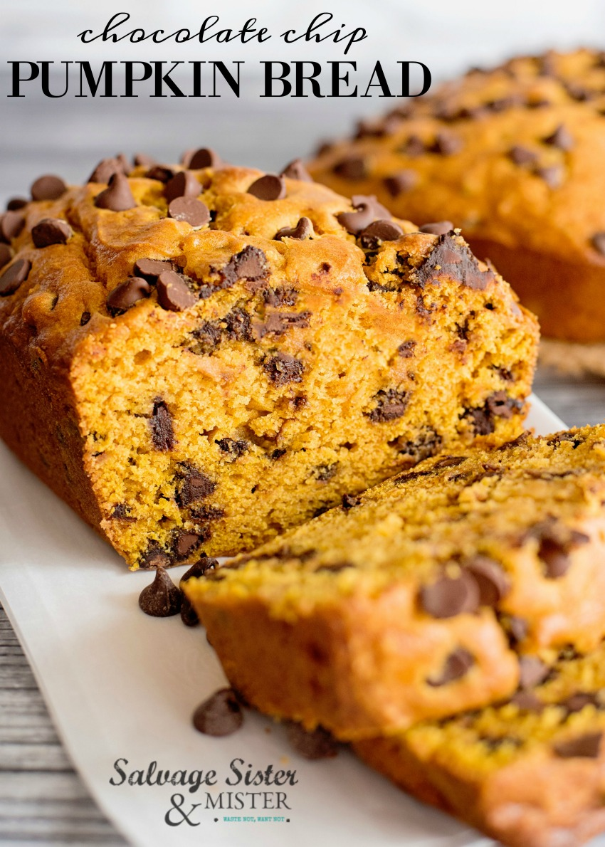 Perfect fall recipe - quick bread and easy to make chocolate chip pumpkin bread. Great for gifts, thanksgiving desserts, breakfast, or a fall snack. Get the full recipe at salvagesisterandmister.com