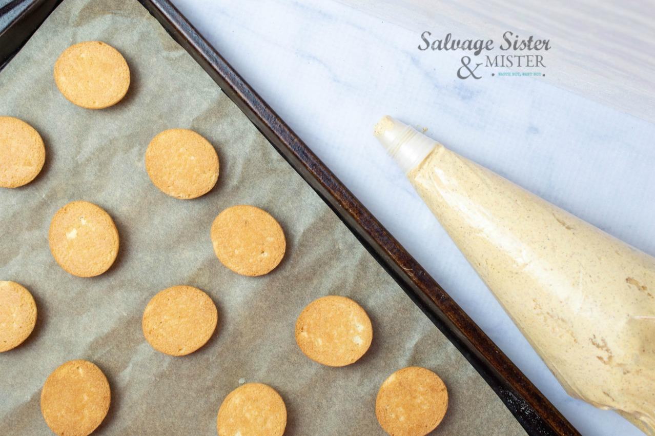 fall cookie recipe on salvagesisterandmister.com