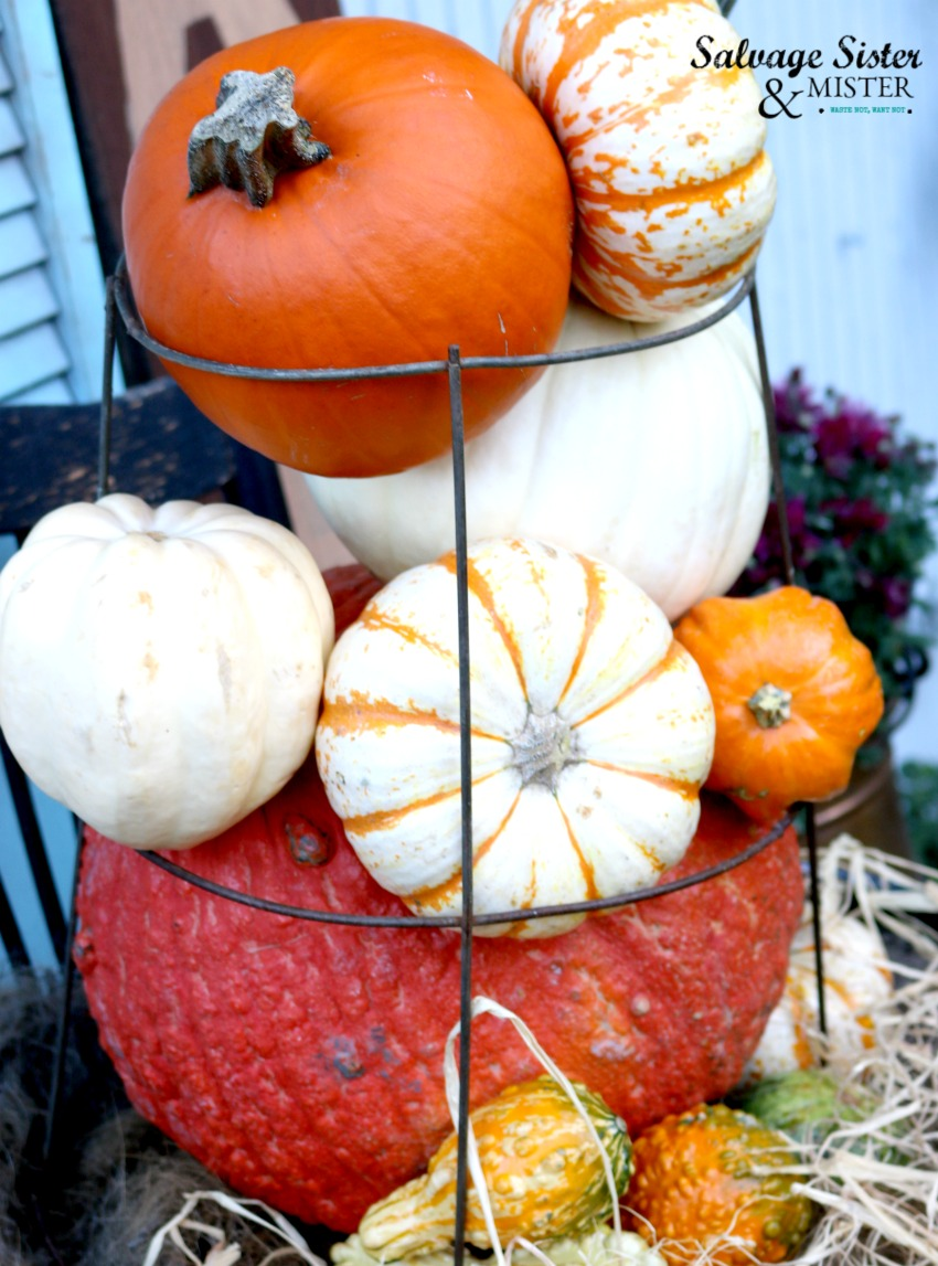 Tomato season may be over but you can still use that tomato cage for something - pumpkin topiary is a fun fall craft project for your home decor - budget friendly and easy to make on salvagesisterandmister.com