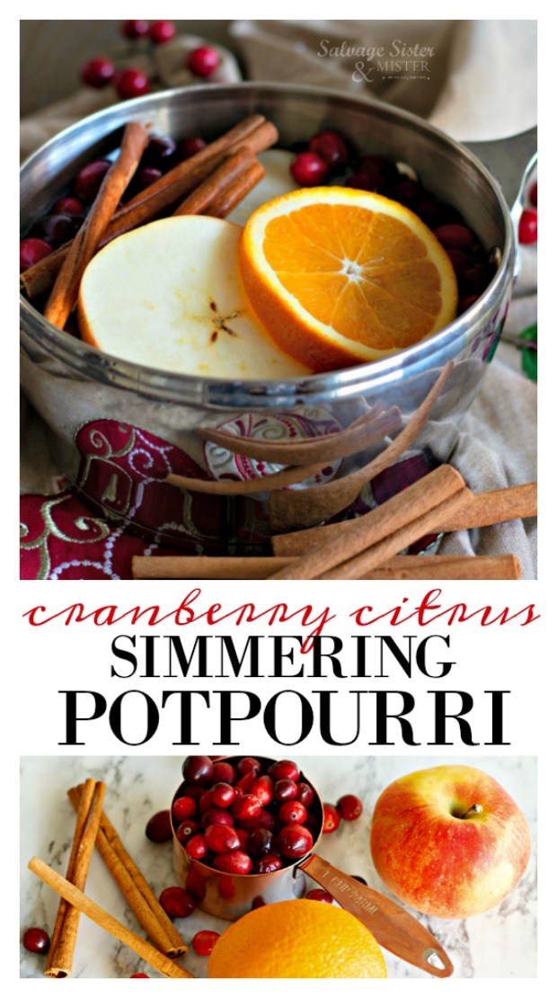 The scent of the season - naturally.  Holiday cranberry citrus simmering potpourri recipe.  Make your home smell of the holidays with this recipe.  All natural ingredients so it's safe for everyone in your home.  More info on salvagesisterandmister.com